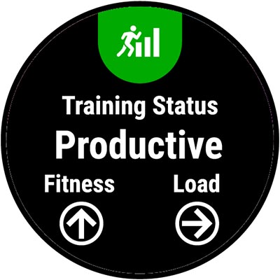 What Is the Training Status Feature on My Garmin Fitness
